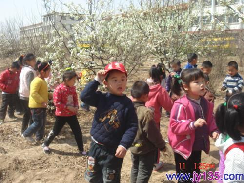 吴洪英 幼儿园/寿光市羊口镇中心幼儿园 吴洪英