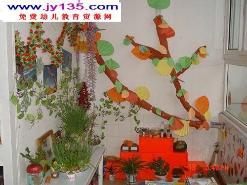 幼儿园中班环境布置-植物角