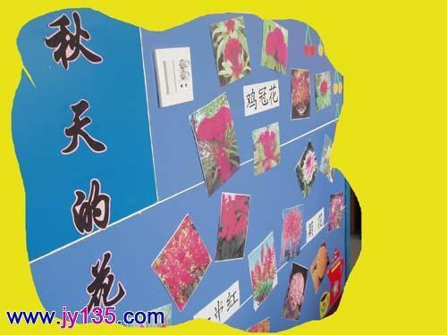秋天中班主题墙布置 幼儿园中班教室布置 教室