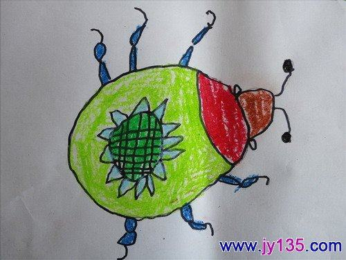 儿童画作品——美丽的瓢虫(图)