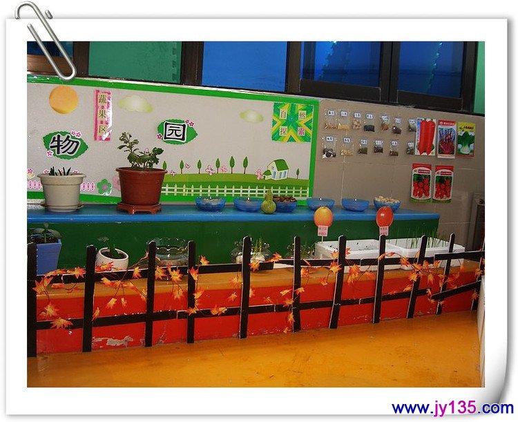 幼儿园自然角创设图片(区角创设)
